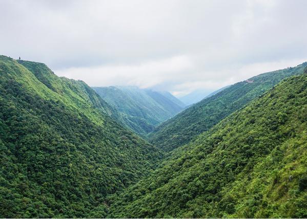 Meghalaya, Assam & Arunachal